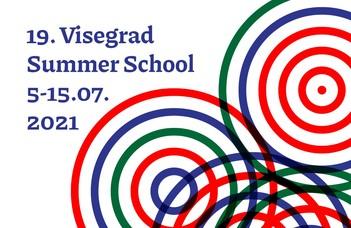 19. Visegrad Summer School (VSS)