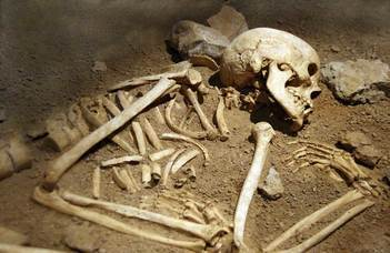 The 4000-year-old cremated bones tell of a tragic fate