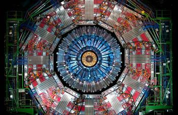 Direct coupling of the Higgs boson to the bottom quark observed
