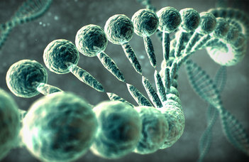 Mesterséges intelligencia és fehérjék