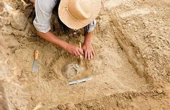 Nemzetközi együttműködés az ősi maradványok megőrzéséért