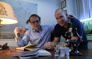ELTE-s kutatók áttörő gyógyszerfejlesztéséről jelent meg cikk a Cellben