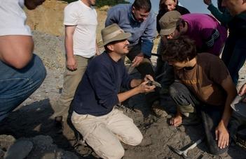 Azonosították az első magyarországi dinoszaurusztojás-leletet (Atv.hu)