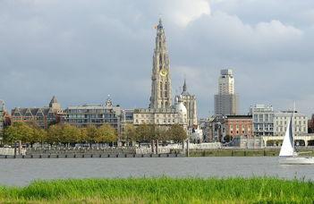 Nyári egyetemi programok Belgiumban