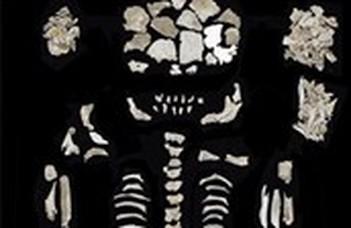 Ikermagzataival eltemetett nő négyezer éves hamvaira bukkantak a kutatók