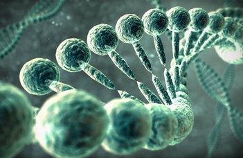 """""""Távirányító"""" nem-kódoló DNS"""