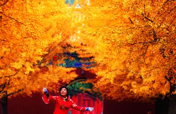 Fényképkiállítás Peking kulturális örökségéről és modern városi arculatáról.