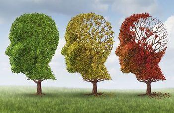Új eredmények az Alzheimer-kutatásban
