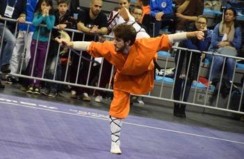 A kínai harcművészetek magyarországi története
