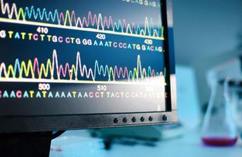 Újabb lépés a fehérjekutatásban