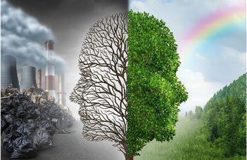 Környezetvédelmi szakpszichológus képzés indul a PPK-n