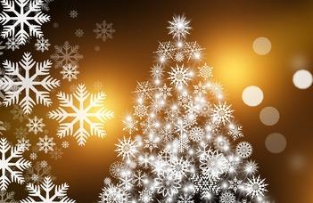 Az ELTE EHÖK karácsonyi adománygyűjtése