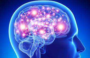 Milyen agyi kapcsolatok a leggyakoribbak?