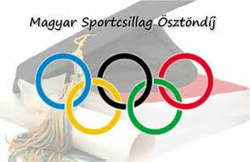 Magyar Sportcsillagok Ösztöndíjprogram