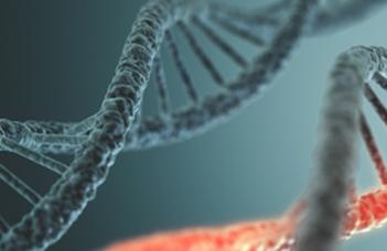 A DNS-hibajavítás nyomon követése