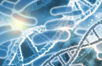 Kórokozó mikrobák több évtizedes rejtélyére derült fény