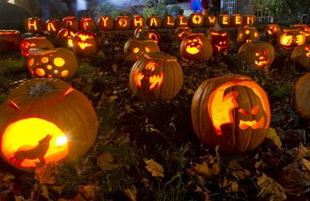Halloween a Füvészkertben