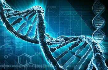 Webszerverrel a gének nyomában