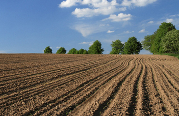 Kutatóközpont alakul a talajfunkciók javításáért
