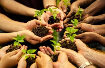 A csoportközi kontaktus hatása a társadalmi változásra