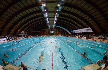 Újra egyetemi úszóbajnokság