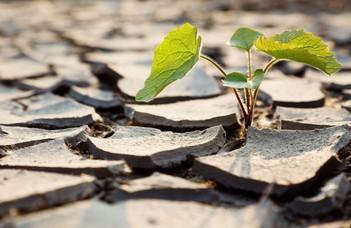 Bartholy Judit meteorológus (TTK) és Veisz Ottó agrárkutató a klímaváltozás veszélyeiről.