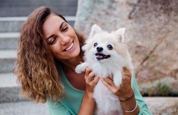 A kutyák nem tudják, hogy a szavak minden hangja számít