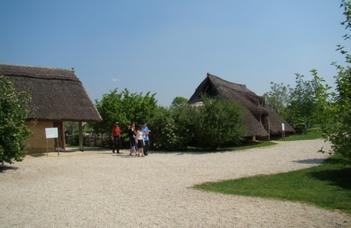 Halomsírmezők vizsgálata a Duna-mentén