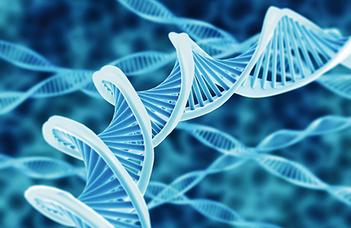 A DNS-teszt megmondja, örökölhetsz-e egy gazdag külföldi rokontól (Nlc.hu)