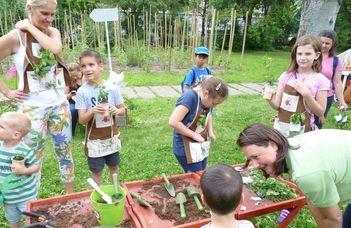 Újra várja a gyerekeket a Szamóca Kiskertész Tanoda az ELTE botanikus kertjében.